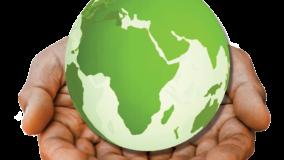 Green-label